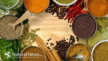herbs-spices-overhead-view-colorful-650x